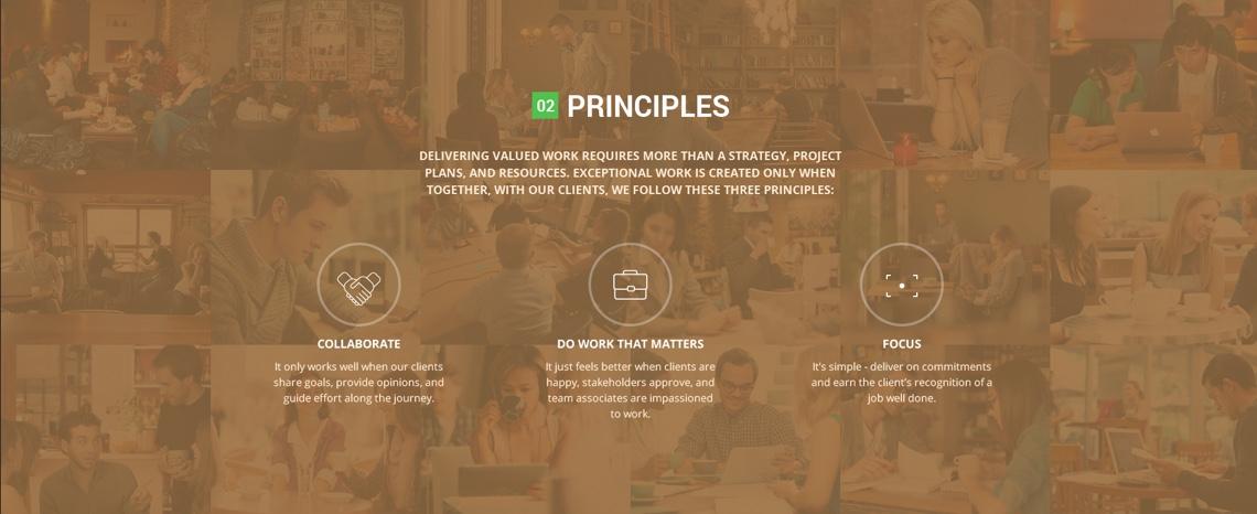 auxin principles
