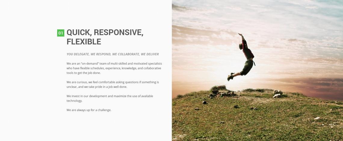 auxin quick, responsive, flexible